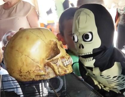 Cauld Johnnie Skull
